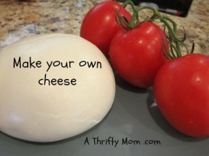 DIY Make your own Cheese