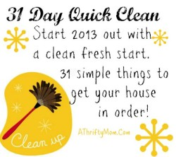 31 day quick clean