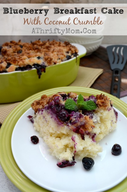 Blueberry Breakfast Cake with Coconut Crumble Recipe