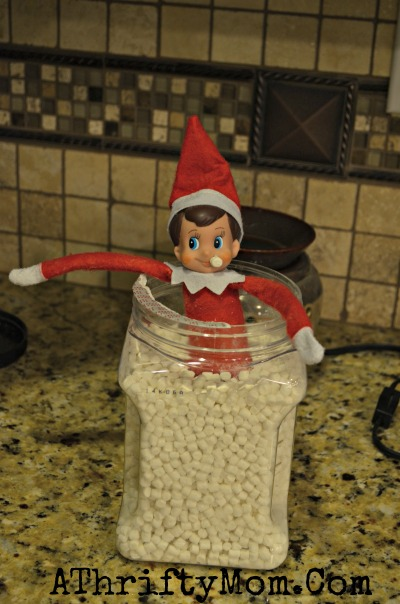 Elf On The Shelf Ideas, Quick and Easy Ideas for your Christmas Family Tradition of Elf on the Shelf. What to so with your silly Elf, Day 19