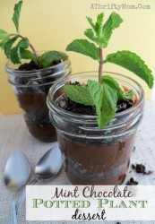 Garden Party Dessert Ideas, Potted Mint Chocolate Plant Parfaits, Garden Party Favors, Spring and summer dessert ideas great for baby showers,   Weddings,   bridal showers