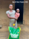 bag-of-rice-project-283
